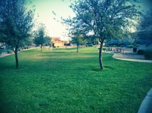 Baseline Place - Community Park
