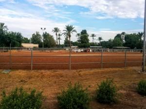 Buena Vista Ranchos arena