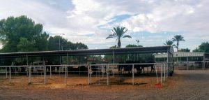 Buena Vista Ranchos horse stalls