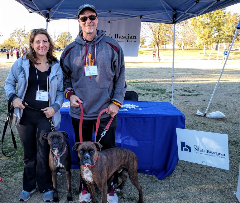 Boxer Luv Rescue Run Tempe AZ