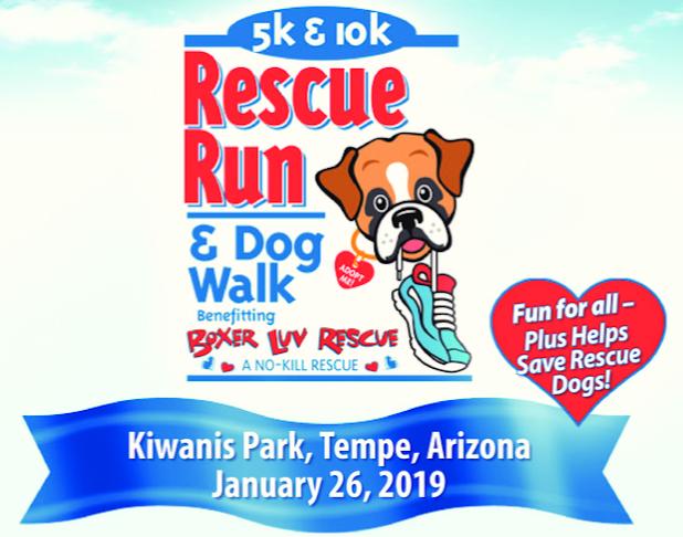 Boxer Luv Rescue Run 2019