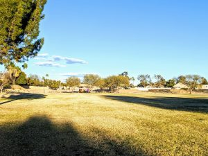 Copperfield estates greenbelt