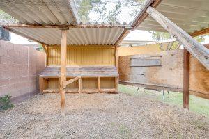 urban farm chicken coop