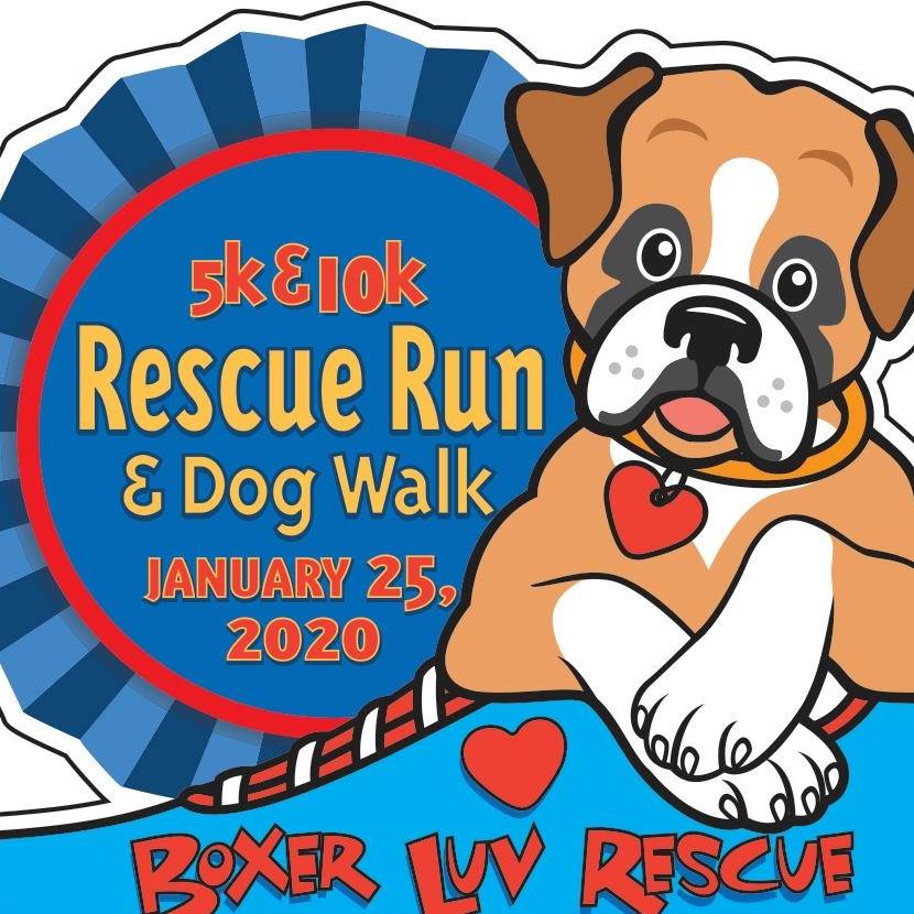 Boxer Luv Rescue Run 2020