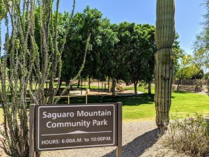 Saguaro Mountain Community park