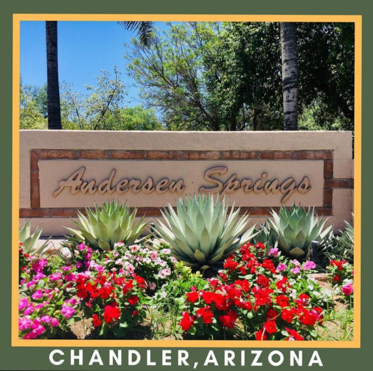Andersen Springs Chandler AZ