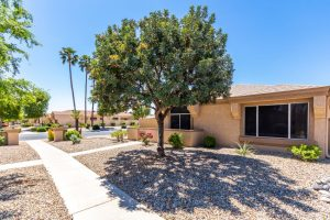 13728 W Countryside Drive Sun City West